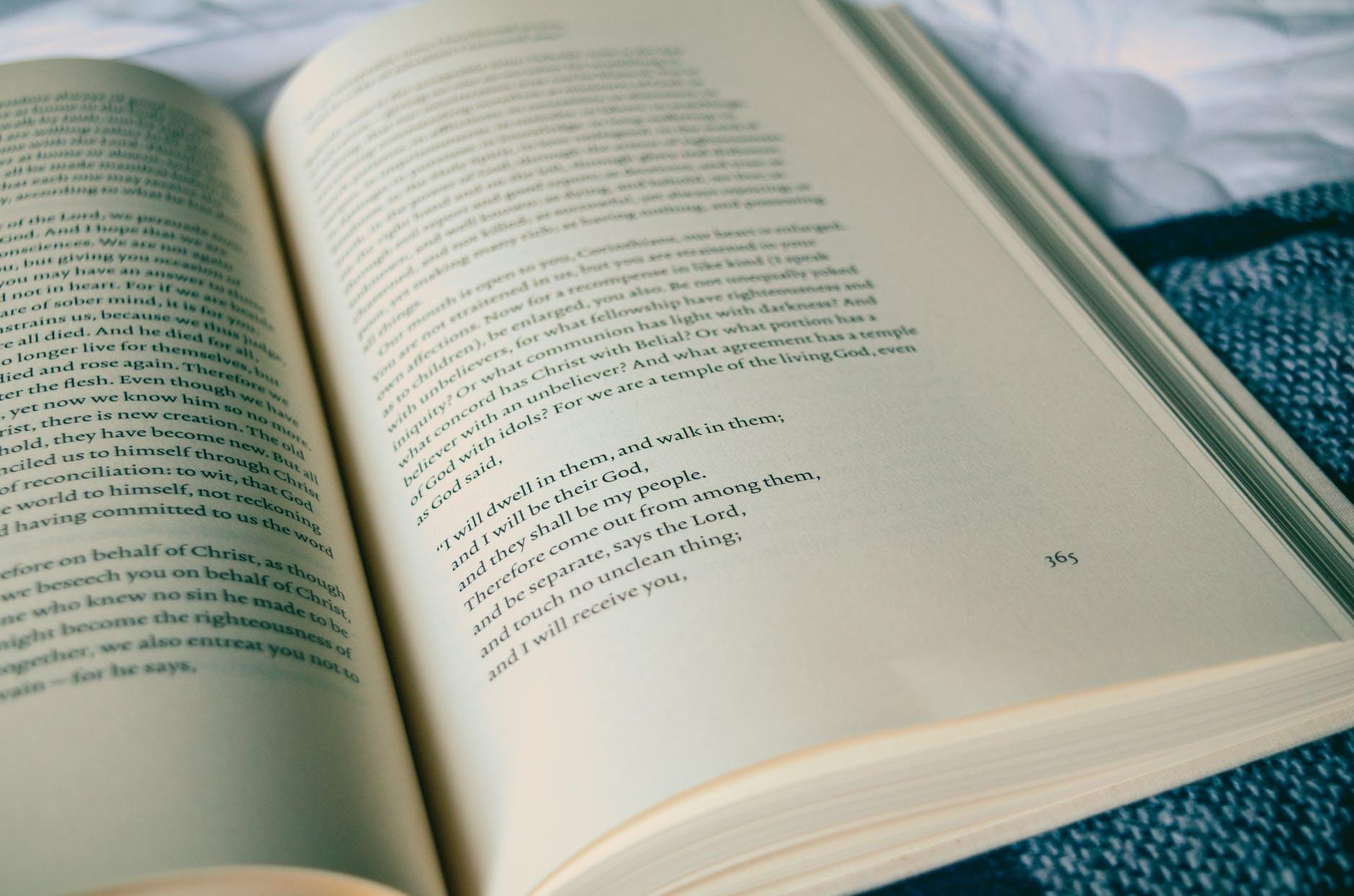 bible book book bindings book series